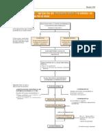 esquema_liquidacion.pdf