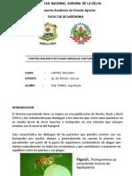 Control Biologico Con Parasitoides- Ruiz Torres,Jorge r.