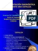 CEFALEAS-07 (PPTshare)