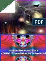 bases-quimicas-de-la-vida.ppt