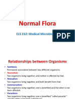 6 Normal Flora medical microbiology