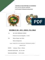 Informe 03 de Topo 2019