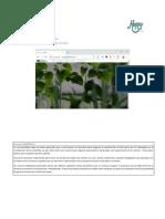 Manual de uso SIG AgFuerte 2.0.pdf