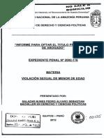 Pedro Tesis Titulo Penal 2012