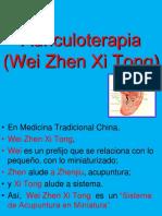 Los Microsistemas de La Oreja.jm