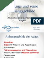 Das_Auge_und_seine_Anhangsgebilde.pptx