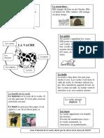 AdminLB-carte_identite_de_la_vache(1).pdf
