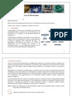 EKP000079978 - mineralogia capitulo I.pdf