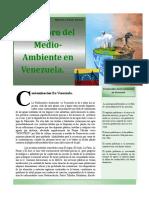 Contaminacion Medio Ambiental en Venezuela.