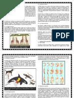 EVOLUCIÓN Y BIODIVERSIDAD.docx