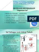 biosel organisasi sel.pptx