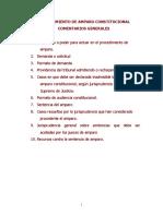 PROCEDIMIENTO DE AMPARO CONSTITUCIONAL (2).doc