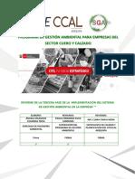 Indice Informe Fase III Sga