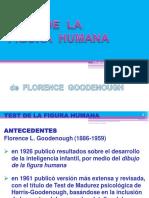 TFH Goodenough.pdf