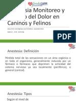 Anestesia Monitoreo y Manejo Del Dolor en Caninos y Felinos