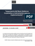 Importancia Del BGC e Instrumentos Final 29 5 2019