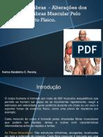 Fisiologia Do Exercício - Tipos de Fibras - 2013.