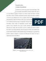 Limitaciones de Los Paneles Solares-Daye
