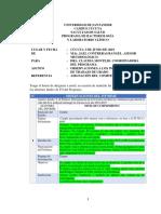 Informe de Observaciones a Los Trabajos de Grado 2019sa