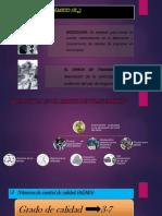 Factor Dinámico ( K_v)