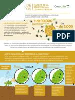 Manejo de La Resistencia de Insecticidas