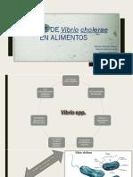 PRESENTACION Análisis de Vibrio cholerae en alimentos.pdf