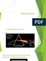 Introd. Fotosint