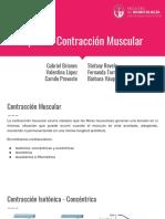Seminario - Tipos de Contracción Muscular