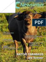 PCC Newsletter 2015 Carabao