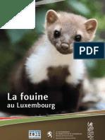 Brochure Fouine