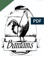 Chicken bantam