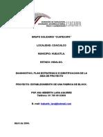 ESTABLECIMIENTO DE UNA FABRICA DE BLOCK