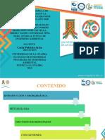 SUSTENTACION PROYECTO DE GRADO.pptx