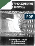 Resumen_Lattuca_AUDITORIA