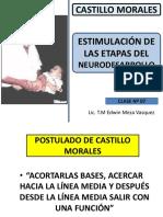 8-9 Castillo Morales Estimulación Del Neurodesarrollo