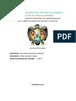 LOS RIOS PROFUNDOS.docx