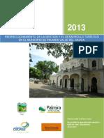 Palmira Plan 2013