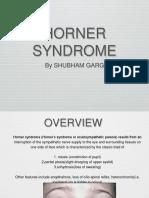 Horner Syndrome 1 Copy 22 o