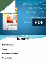 ''Mi Planta de Naranja-Lima Paulina