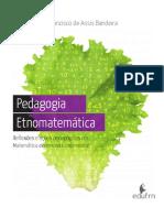 Pedagogia Etnomatematica (Livro Digital)