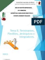 Tema 5. Terminantes, Flexibles, Jerarquicos o Intefradores