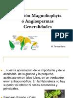 Division_Magnoliophyta.ppt