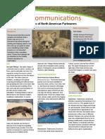 Fur Bearers Disease