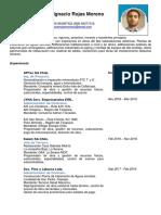 CurrículumVitae Constructor Programador Chile