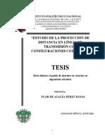 Tesis Flor Perez