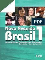 Novo Avenida Brasil 1.PDF[1]