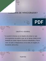 Columna de winogradsky.pptx