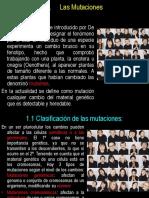T15 MUTACIONES
