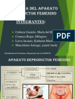 Informe Formacion de La Orina Por Los Riñones