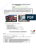 8° año pauta de evaluacion de  lapbook la celula.docx